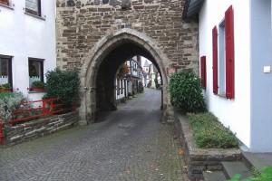 Rhein-+Siebengebirge-012